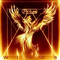 CD review PICTURE 'Wings'