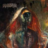 CD review ALGEBRA 'Pulse?'