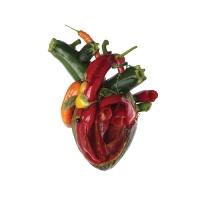 Review CARCASS 'Torn Arteries'